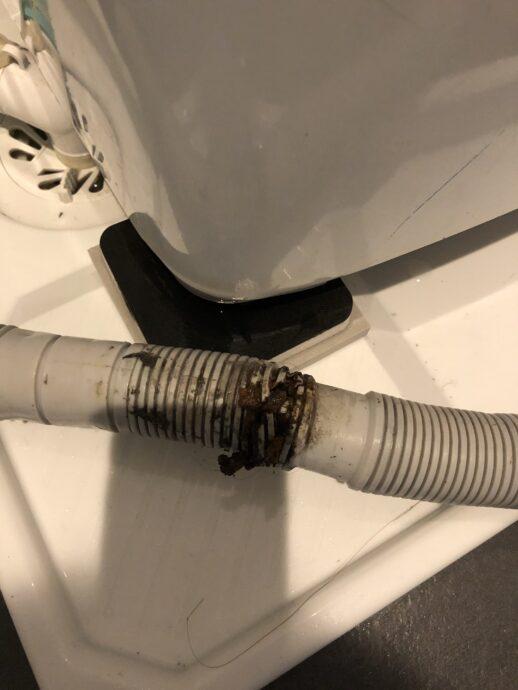 洗濯機排水ホース劣化画像